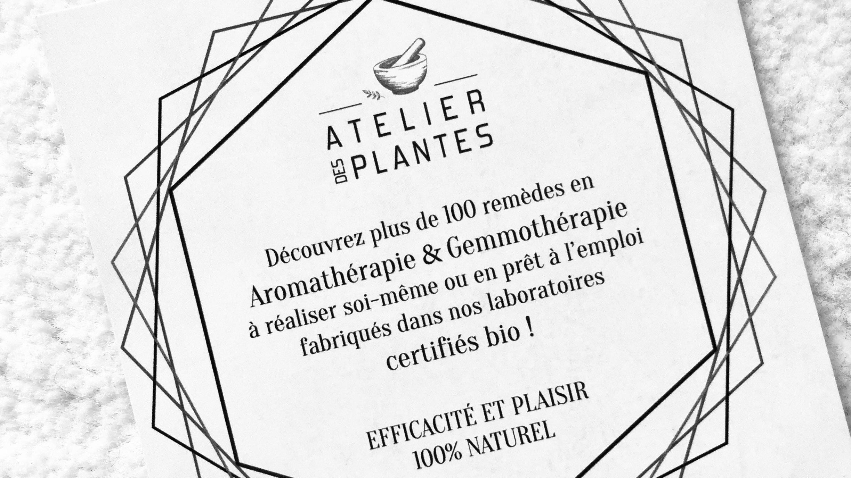 Atelier des plantes : je vous donne mon avis !