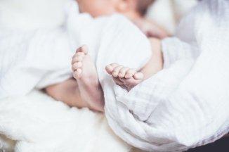 baby-1866623_640